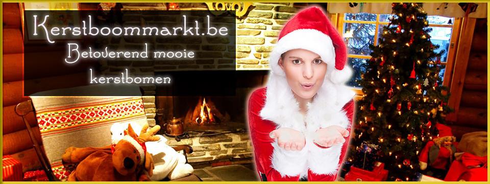 Kerstboombezorgen.eu